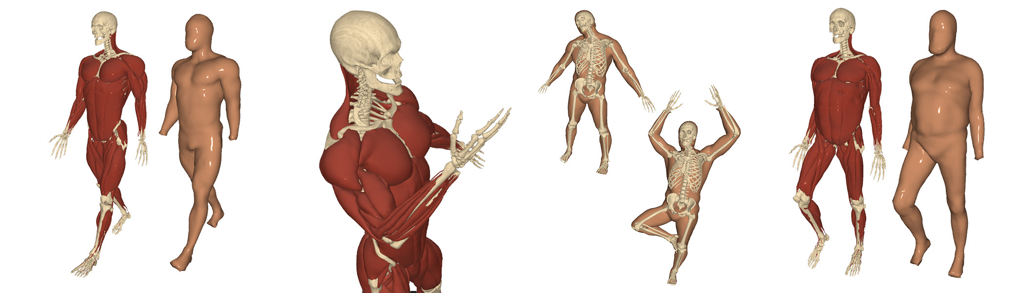 Reconstructing Personalized Anatomical Models For Physics Based Body